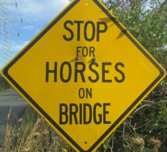 Stop-for-horses-on-bridge-sign-W&OD-Rail-Trail-VA-2015-10-6&7