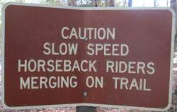 Slow-speed-sign-Tallahassee-St-Marks-Rail-Trail-FL-2016-01-22-pix