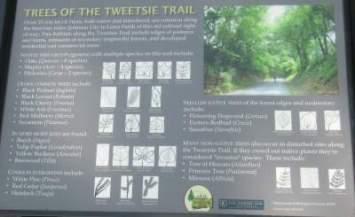 Interp-sign-Tweetsie-Trail-TN-8-3-2016