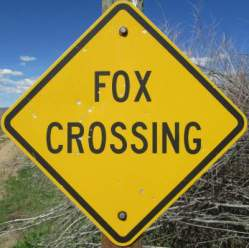 Fox-crossing-sign-Union-Pacific-Rail-Trail-Park-City-to-Echo-UT-5-1-2016