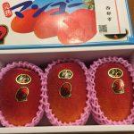 【ふるさと納税】宮崎県西都市の完熟マンゴー「太陽のタマゴ」が最高にうまいっ!