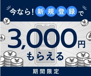 FXGT,3000円,