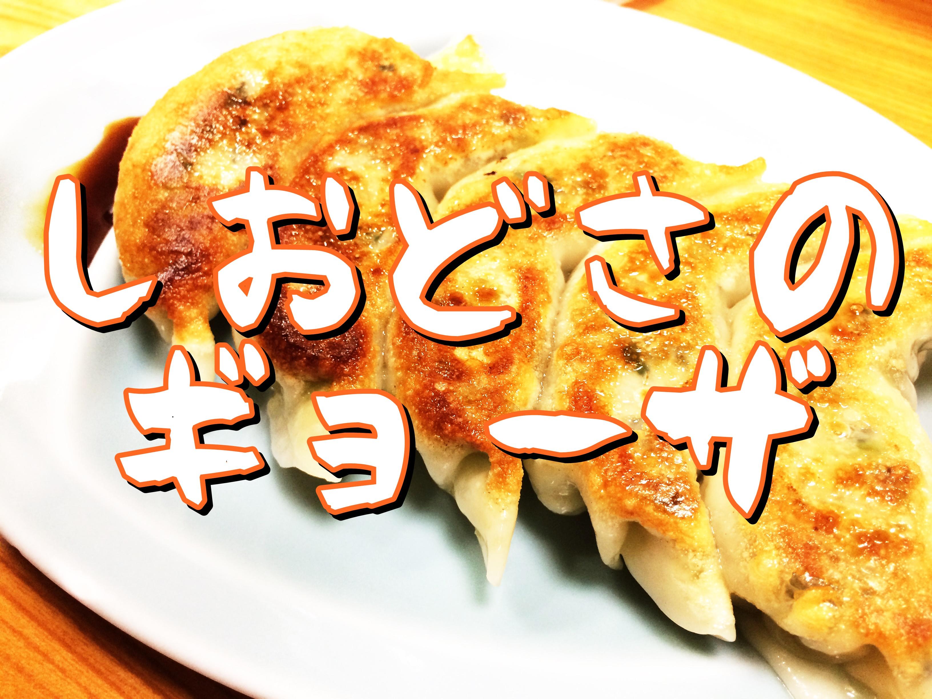 南魚沼【どんさ子・塩沢17号店】一番人気の味噌ラーメンと餃子ランチ