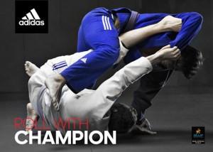 Champion Model