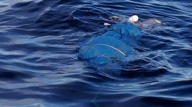 628-26 body in sea