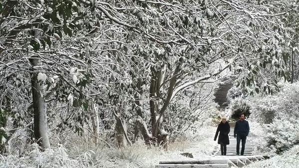 หิมะในต้นเดือนพฤษภาคม (ภาพแชร์จากอินเตอร์เน็ต)