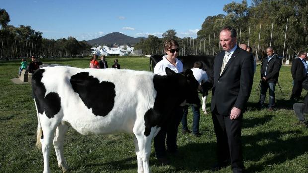 นาย  Barnaby Joyce ร.มว.กระทรวงเกษตร (ภาพชั่วคราวจาก Financial Review)
