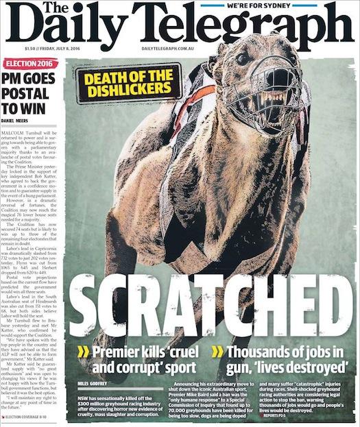"""นสพ. the Telegraph ฉบับ 8 ก.ค. 2016 พาดหัวข่าว """"การแบนการวิ่งแข่งสุนัข"""" (ตะกร้อครอบปาก) / อวสานของสุนัขเกรย์ฮาวน์ (หรือ dishlickers -ไอ้ตัวเลียจาน)"""