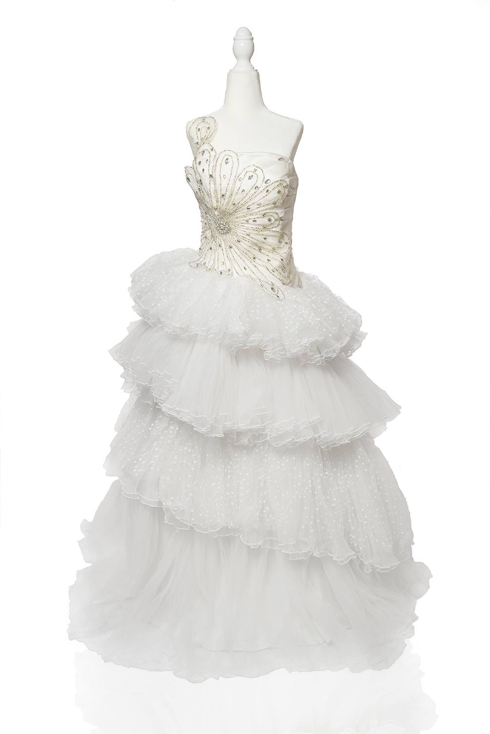 ,Wedding Fancy Maxi Dresses Pakistani
