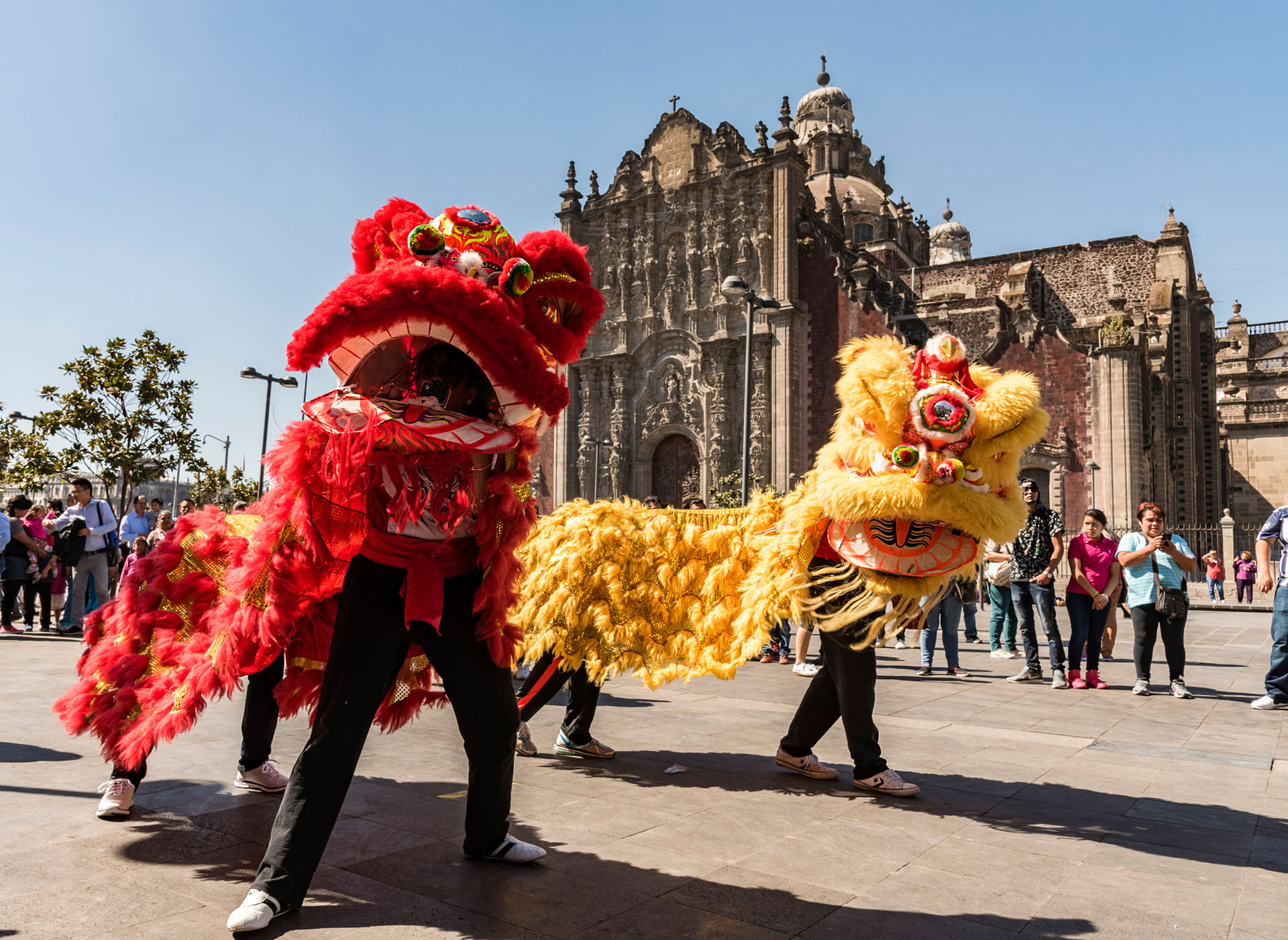 Visit Mexico Sets Sights on China Tourism Market in Diversification     The Lunar New Year being celebrated in Mexico City  Photo  Leonardo  Emiliozzi   Shutterstock