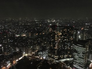 famous landmarks such as Mount Fuji, the Tokyo Skytree, Tokyo Tower, Meiji Shrine and the Tokyo Dome can be seen from the observatories.