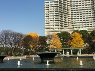 a fountain in the middle of trees and buildings