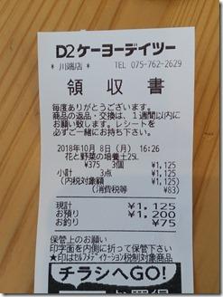 2018-10-08-daikon (7)