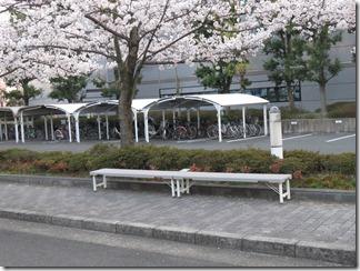 JT-sakuranotoorinuke-2018-0328 (6)