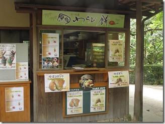 Ryoanji (11)
