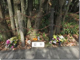 abuyamajisinkansokusyo (52)