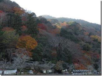 arasiyama-walk (23)