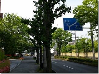 bukkyoudaigaku-murasakinokyannpasu (10)