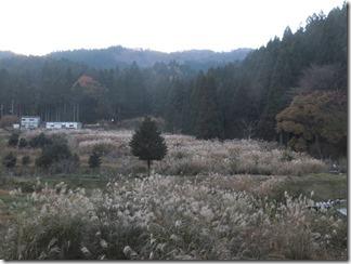 hanaseyamanoiewomezasu (83)
