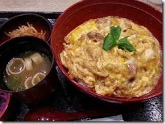 hinaijidori-oyakodon (2)