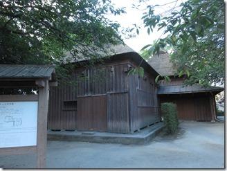 kamikosikijika-kagosimasinai-2018-08-11 (67)