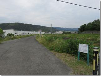 katuragawakasennsi-nisiyamatennouzan (1)