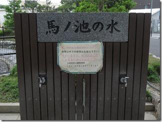katuragawakasennsi-nisiyamatennouzan (53)