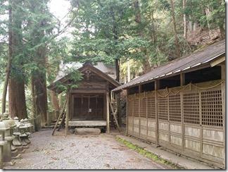 kumogahara-oomori (47)