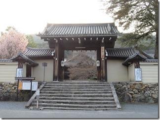 kyoto-iwakura (30)
