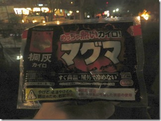 kyotohigasiyamahanatouro2019 (26)