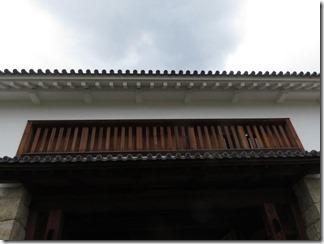 maidururyokou-tanabejyouato-maidurukouen (52)