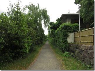 misosokigawa-kamogawa-hotaru-sijyoumade (10)