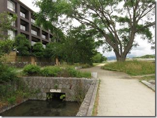 misosokigawa-kamogawa-hotaru-sijyoumade (5)