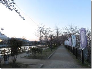 nagaokatenmanguu-sakura-raitoappu (4)