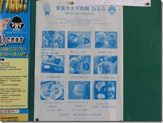 narakaedenosato-hirara (8)
