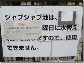 nisiyamakouen-jyabujyabuike (4)