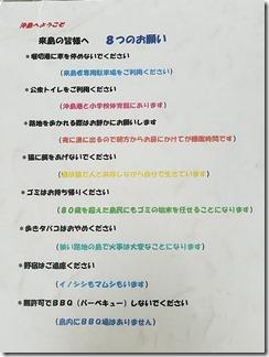 okisima-biwako (6)