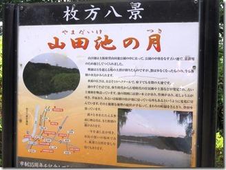 oosakafueiyamadaikekouen (35)