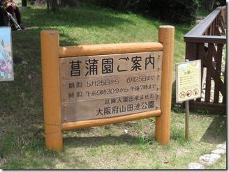 oosakafueiyamadaikekouen (38)