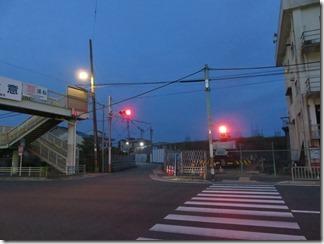 ooyamazaki-katuragawakasennjikikouen-hotaru (1)