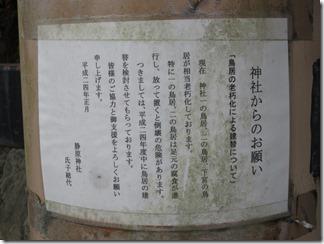 sizuharajinjya-sizuharajidoukouen (16)