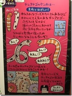 yorunosuizokukan-kyouto (62)