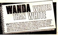 """Wanda Whiter than White"" logo. A creative format that incorporates the text box."