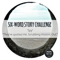"Six-Word Story Challenge - ""Spy"""