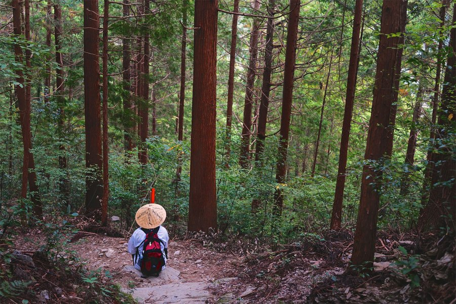 Student Series! Temple Chasing: A Japanese Buddhist Pilgrimage
