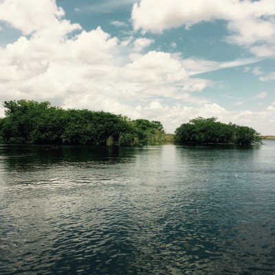 UNESCO: The Everglades