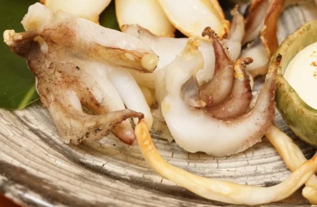 モンゴウイカの下足は柔くて美味しい