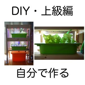 自作の水耕栽培装置。