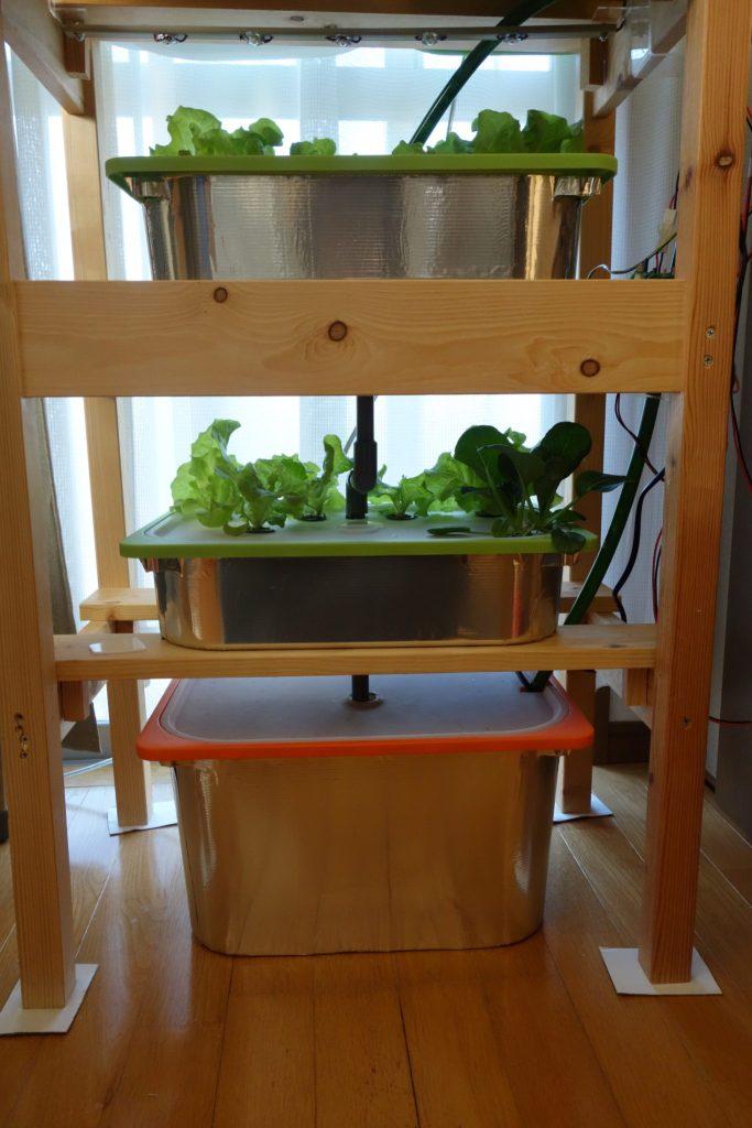 遮光対策をした自宅の水耕栽培装置の画像