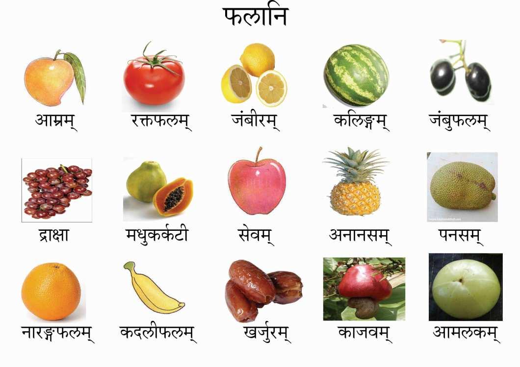 75+ Flowers Name In Sanskrit - flowers pictures